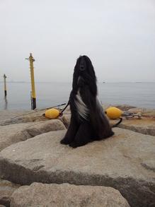 2013年1月13日芦屋浜釣り場にて.jpgのサムネール画像